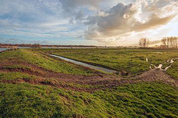 Marshy Grasland in der Nähe eines holländischen Deiches von Ruud Morijn