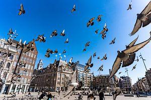 Amsterdam   De Dam van Mick de Jong