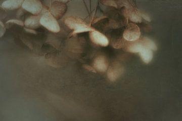 Winterträume von Anneliese Grünwald-Märkl