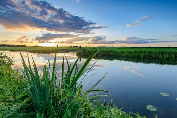 Sunset in summer in a rural landscape with water