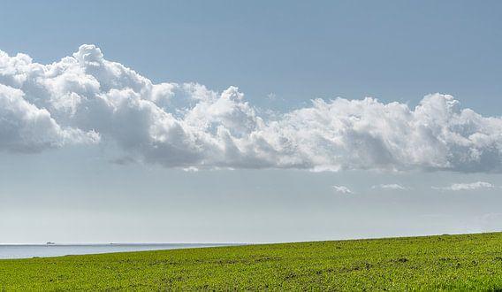 0494 The Cloud