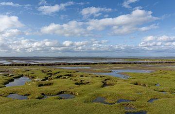 Kwelder met lahnung in het Nationaal Park Waddenzee van Peter Eckert