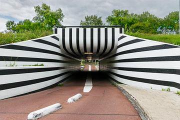 Fahrradtunnel-Zebra drucken von Patrick Verhoef