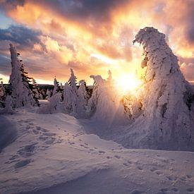 Dramatischer Sonnenaufgang auf dem Brocken im Winter von Oliver Henze
