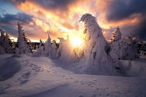 Dramatischer Sonnenaufgang auf dem Brocken im Winter