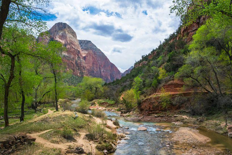 rivier in Zion National Park, Amerika van Rietje Bulthuis