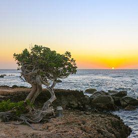 Schöne Farben bei Sonnenuntergang an der Nordküste von Aruba von Arthur Puls Photography