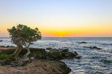 Belles couleurs pendant le coucher du soleil sur la côte nord d'Aruba