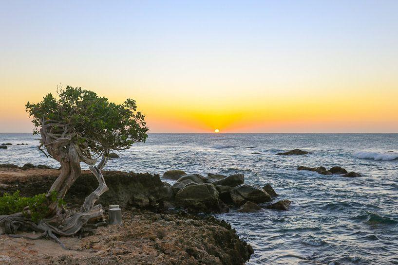 Belles couleurs pendant le coucher du soleil sur la côte nord d'Aruba sur Arthur Puls Photography