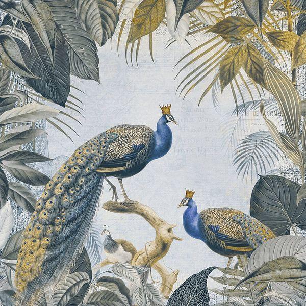 Peacock Kings van Andrea Haase