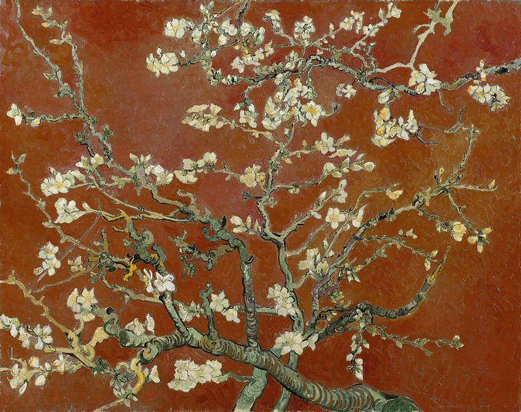 Amandelbloesem van Vincent van Gogh (terracotta) van Meesterlijcke Meesters