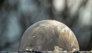 Bevroren zeepbel van Tomas S.