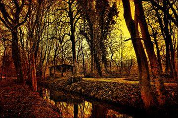 Sunset in the park van Leo Huijzer