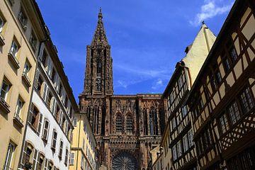 Straßburger Münster von Patrick Lohmüller