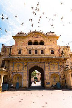 Passage zur Stadt in Jaipur mit Tauben, die über dem Kopf fliegen. von Niels Rurenga