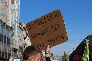 Dumbledore Wouldn't Let This Happen van Mattijs Deprez