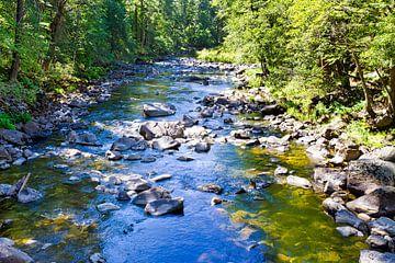Merced River, Yosemite-Nationalpark van Melanie Viola