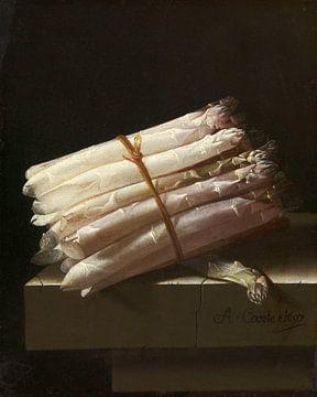 Stilleben mit Spargel - Adriaen Coorte von Marieke de Koning