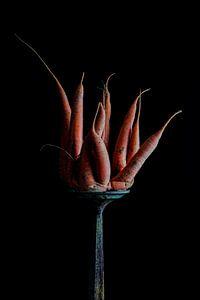Stilleben Karotte auf einem Sockel