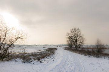 Schneelandschaft bei Nimwegen von Patrick Verhoef