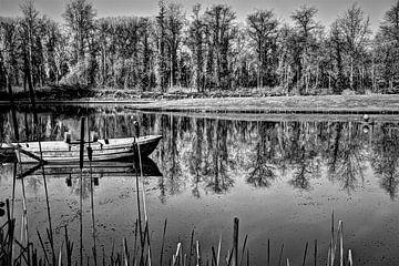 Boot auf dem Teich von Joel Houbrigts