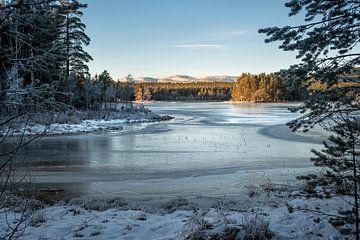 Frozen world. van Marco Lodder