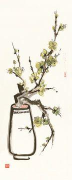 Moss Blossom, Chris Paschke von Wild Apple