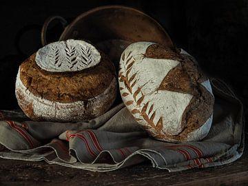 Vers gebakken van Miriam Meijer, en plein campagne.....