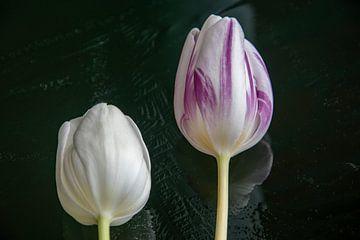 Bloemen op het ijs van J..M de Jong-Jansen