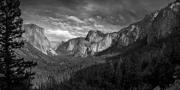 Yosemite NP - zwart en wit uitzicht over de vallei van Toon van den Einde