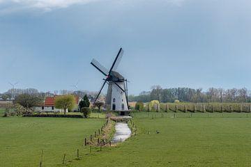 Mühle auf einer Wiese bei Lienden von Moetwil en van Dijk - Fotografie