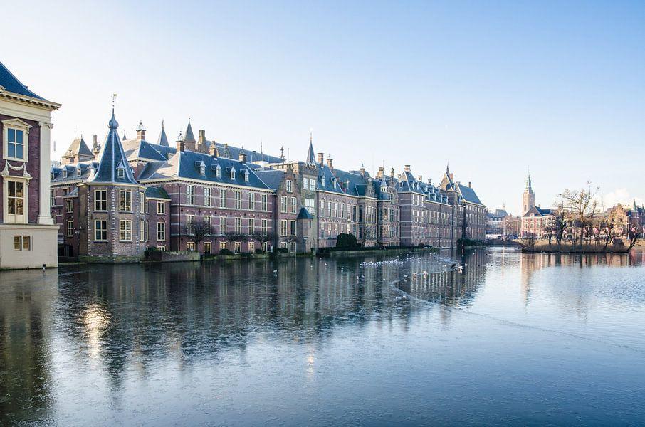 Den Haag - Hofvijver in de winter van Ricardo Bouman | Fotografie