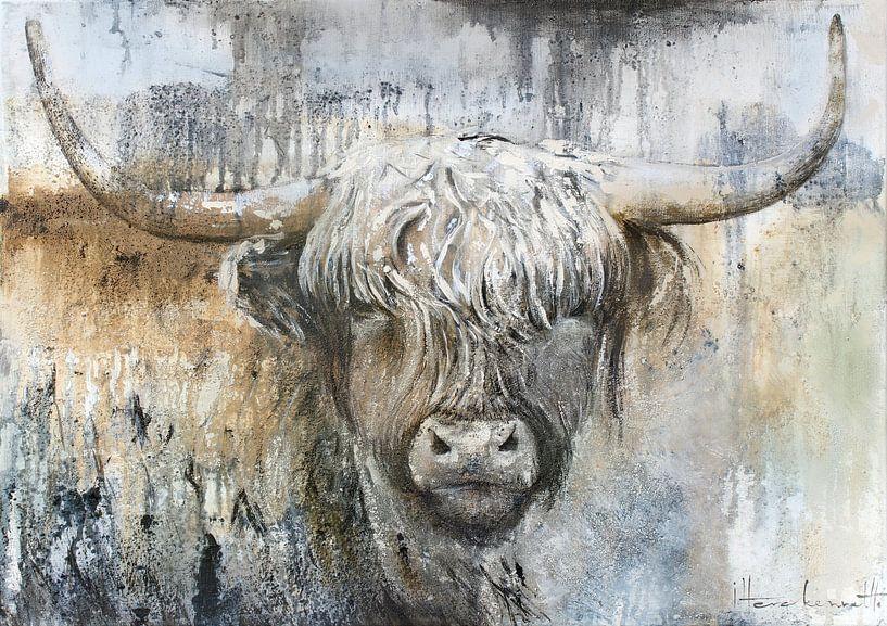 Vache Highland II sur Atelier Paint-Ing