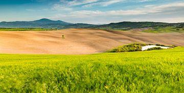 Landschap in Zuid Toscane / Val d'Orcia sur Damien Franscoise