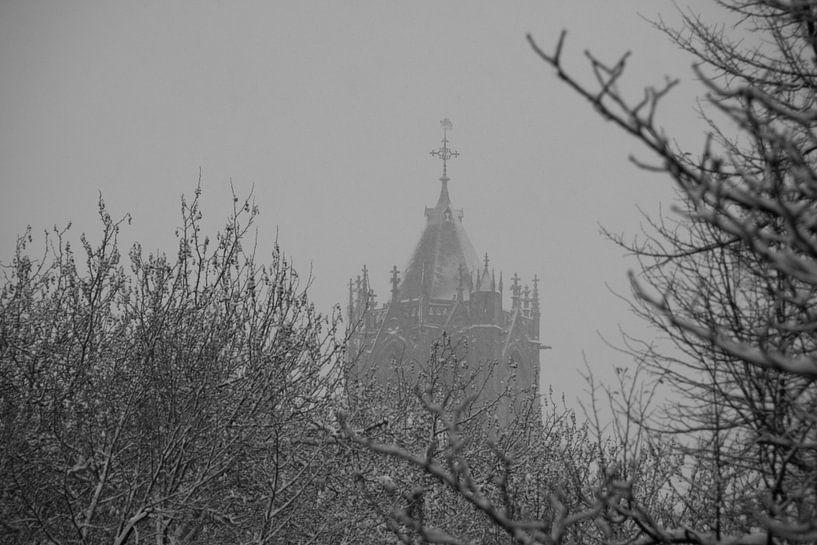 Puntje van de Dom op een winterse dag van martien janssen