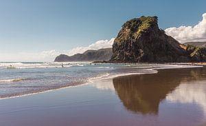 Lion Rock - Piha Beach