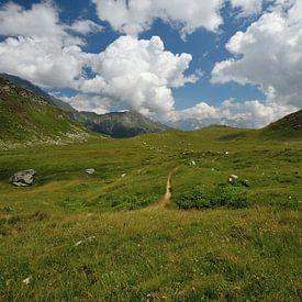 Mooi panorama in de Alpen van Peter Apers