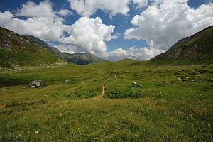 Mooi panorama in de Alpen