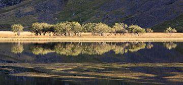 Reflectie in meer, Loch Achtriochtan , Glencoe, Schotland van Johan Zwarthoed