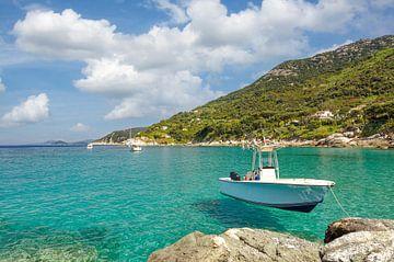 Kustlandschap op het eiland Elba van Peter Eckert