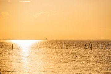 Zonsondergang  met oranje licht van Brian Morgan