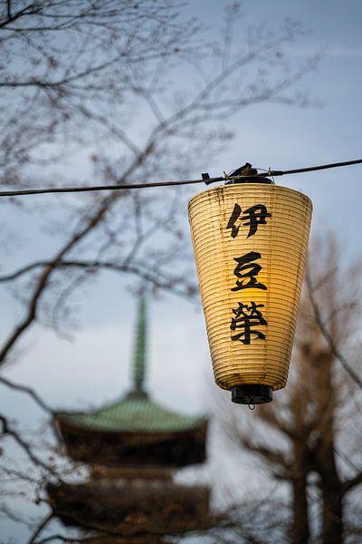 Lampion in Ueno Park van Mickéle Godderis