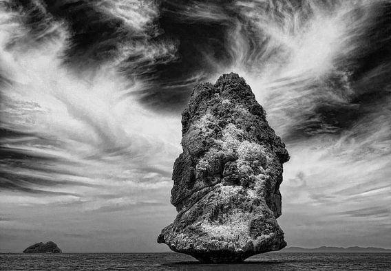 Eenzame rots in landschap van Marcel van Balken