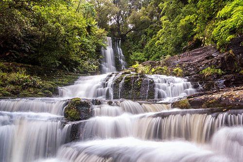 McLean Falls, Nieuw Zeeland van
