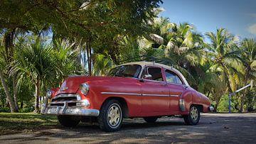 Cuba van Marcel Brands