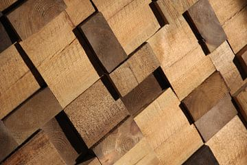 3D Kops hout van Fred Vester