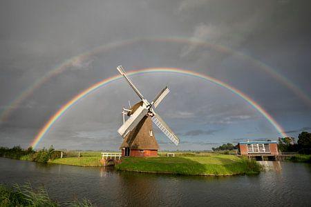 grote dubbele regenboog boven Nederlandse windmolen in zomerregen van Olha Rohulya