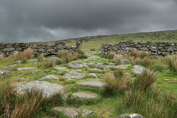 Dartmoor landschap / Dartmoor landscape van Elles Rijsdijk