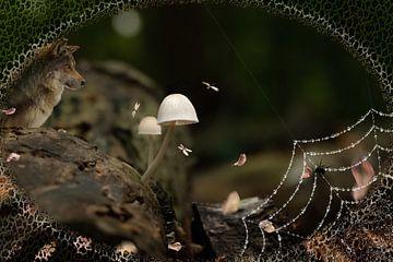 Het fantasie bos van