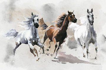 Wilde Pferde von Karin Schwarzgruber